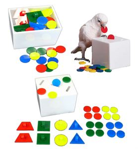 Teach Box & Bank Medium