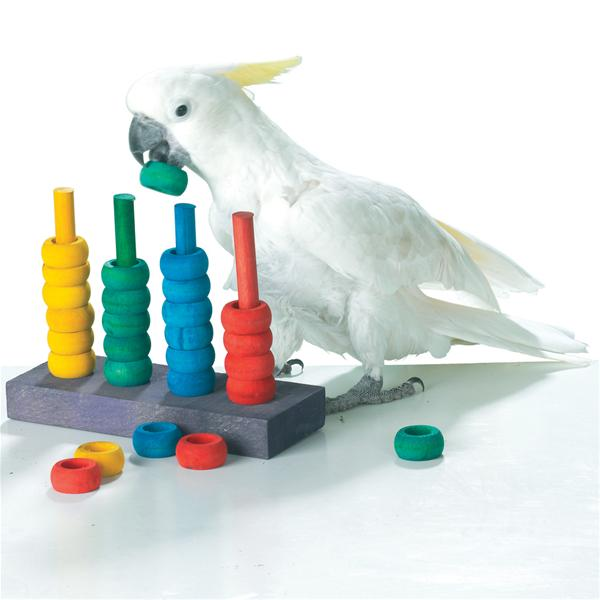 Wholesale Bird Toys : Zoo max teacher toy parrot learning game gf wholesale